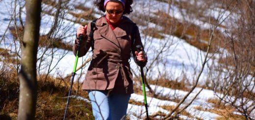 nordic walking zima