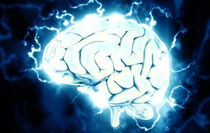 pamiec mozg