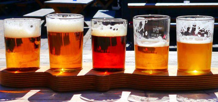 Cesky Festival Piva Wroclaw