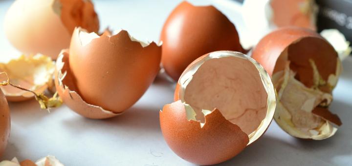 domowe nawozy skorupki jaj